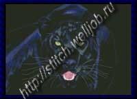 Чёрная пантера.